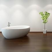 Pflanzen für das Badezimmer: Jetzt wird´s tropisch