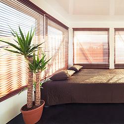 Zimmerpflanzen für das Schlafzimmer