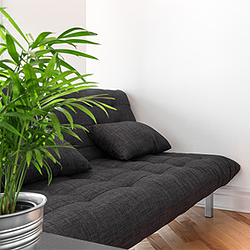 Krankheiten bei Zimmerpflanzen