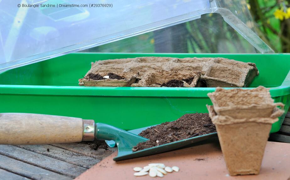 Minigewächshaus für die Wohnung zur Pflanzenaufzucht